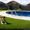 Pets, pools and synthetic grass