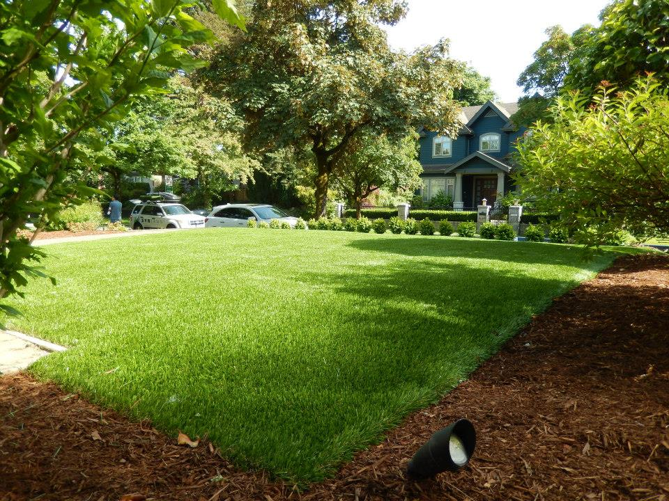 After...with SYNLawn artificial grass