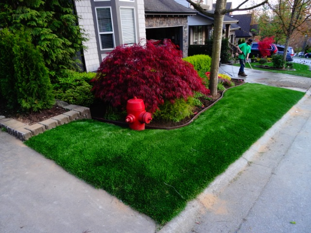 Alder Drive residents will be proud to have this synthetic grass yard on their street - thanks Adam!