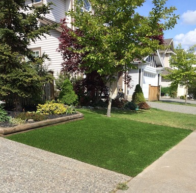 Our customer doesn't have to mow or water compared to the next door. (SYNLawn looks better too!)
