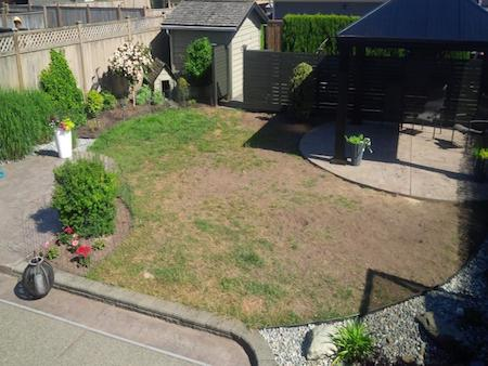 This customer has a great space and nice garden edging but the dog and chafer beetles destroyed his lawn.