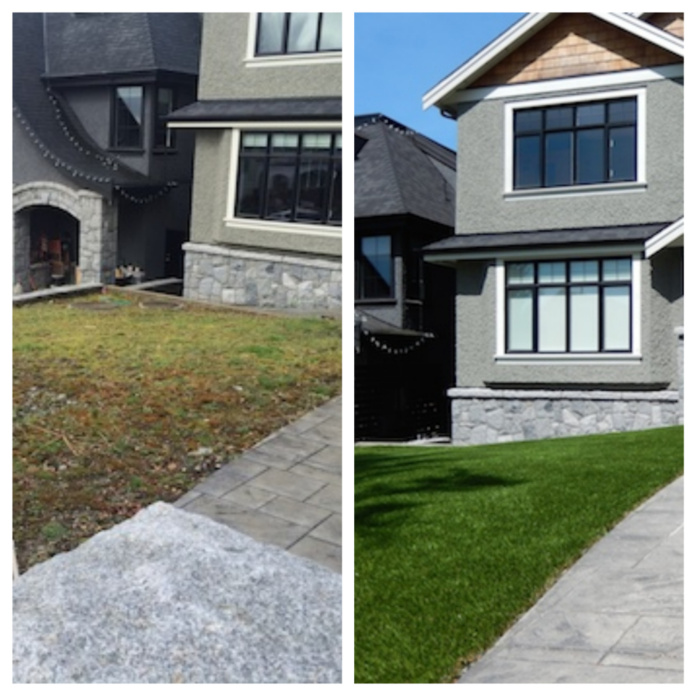 Before and After SYNLawn Vancouver_Fotor_Collage