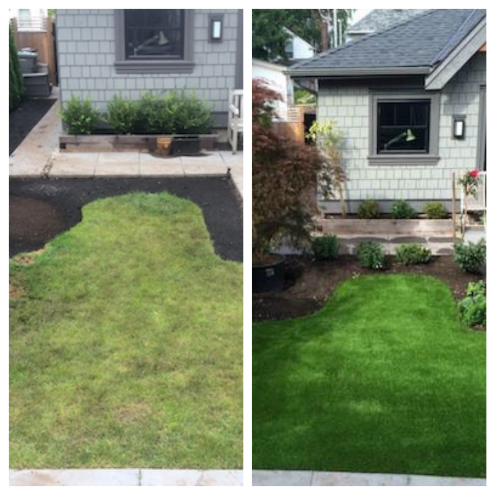 Before & After SYNLawn landscape design_Fotor_Collage
